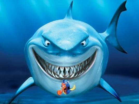Verso il PPTour Saint Vincent – Arriva il Fish che divora gli squali!