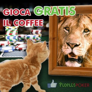 coffee-gatto-fb-post (1)
